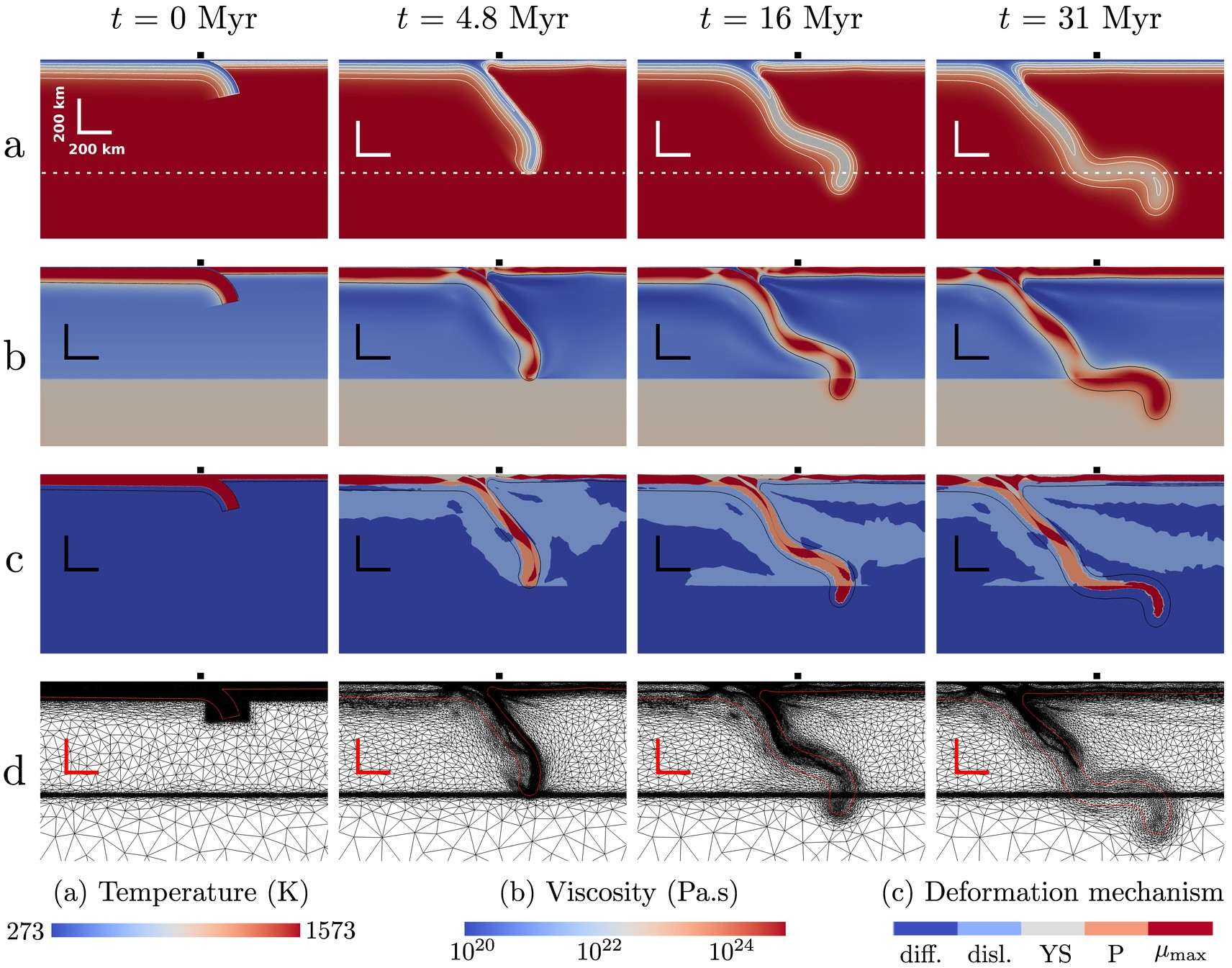 A 2-D thermo-mechanical dynamic subduction simulation from Fluidity